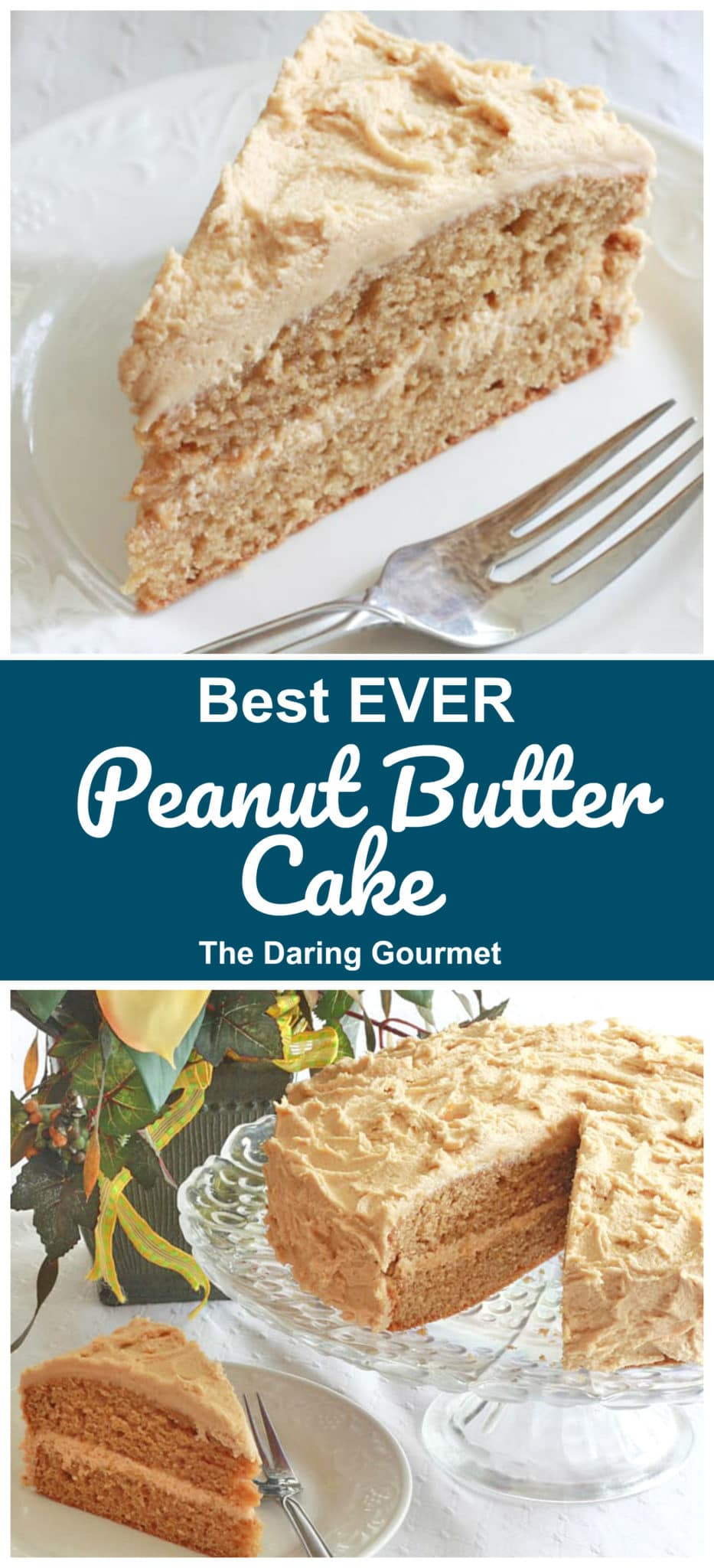 peanut butter cake recipe best ever natural unsweetened