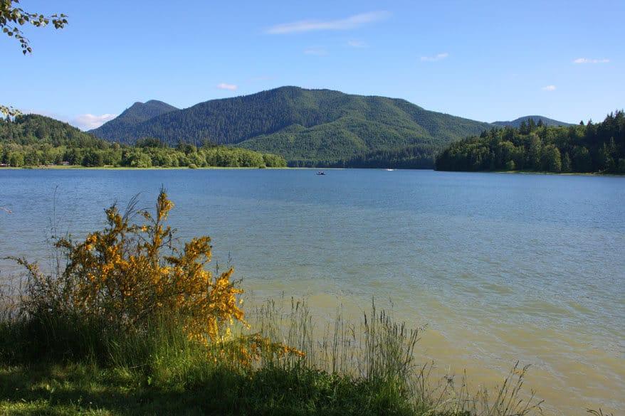 Alder Lake 1 sm