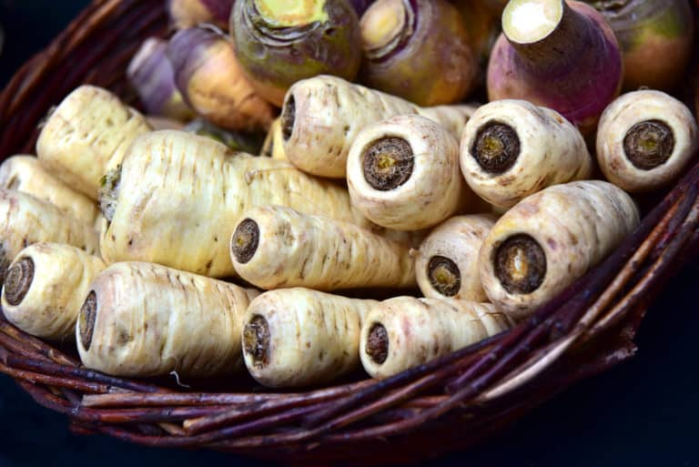 what are parsnips what do they taste like