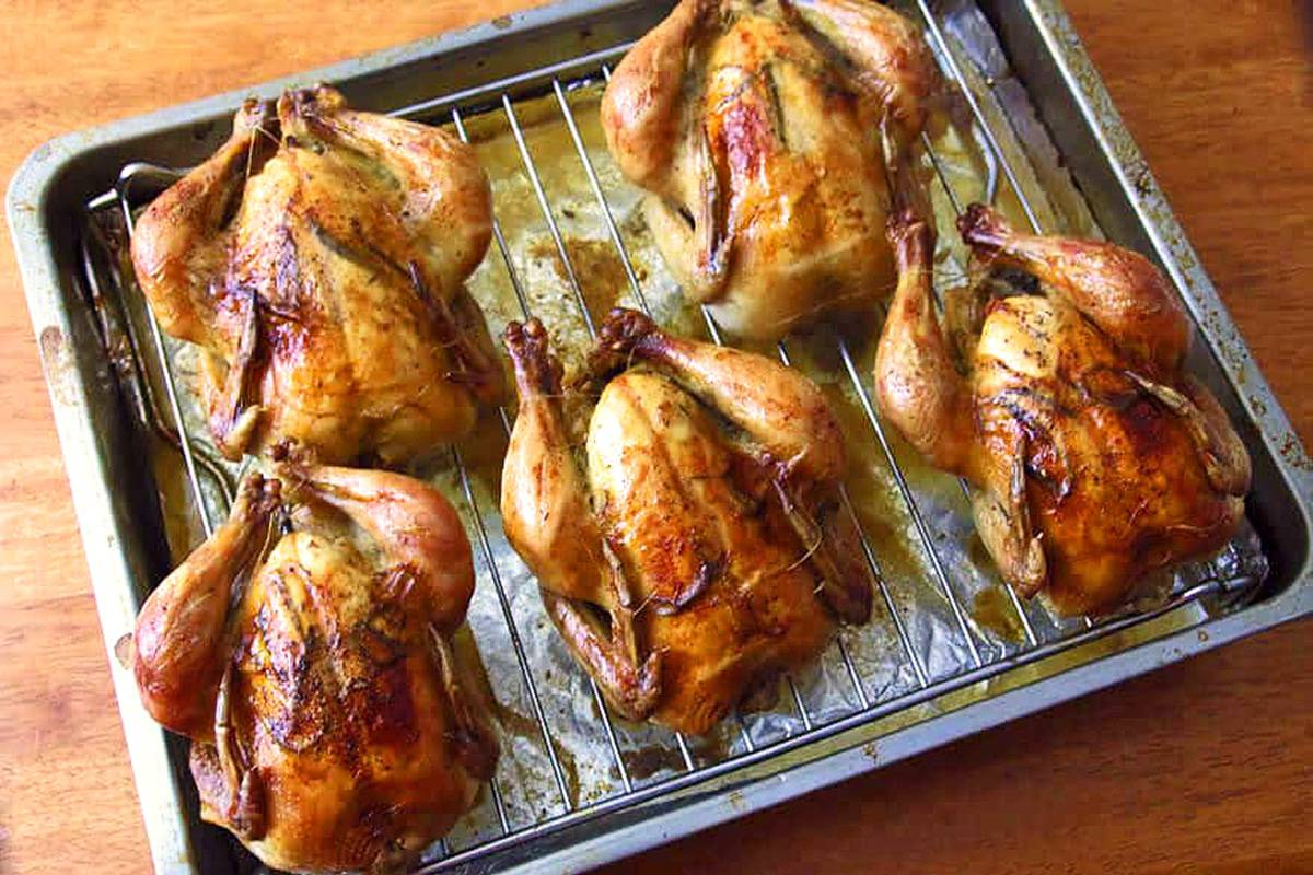 cornish game hen recipe best roasted lemon garlic herb rosemary thyme crispy skin