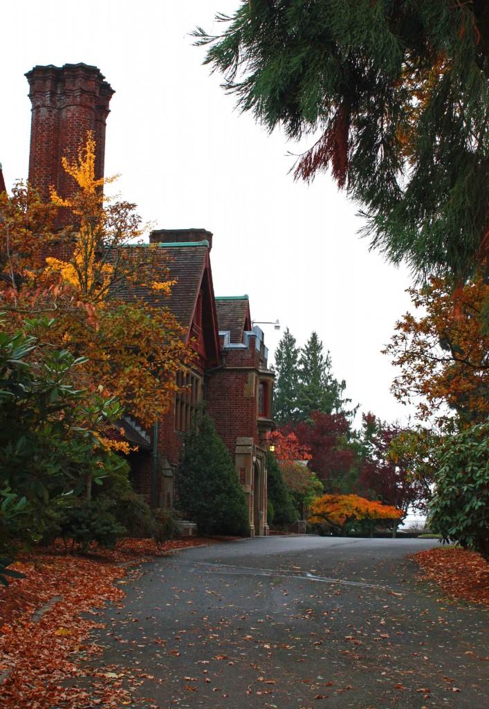 Tacoma Autumn 23 edited cropped