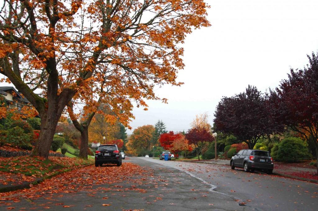 Tacoma Autumn 3