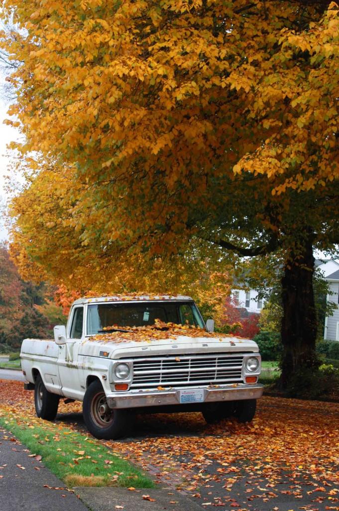 Tacoma Autumn 4_edited