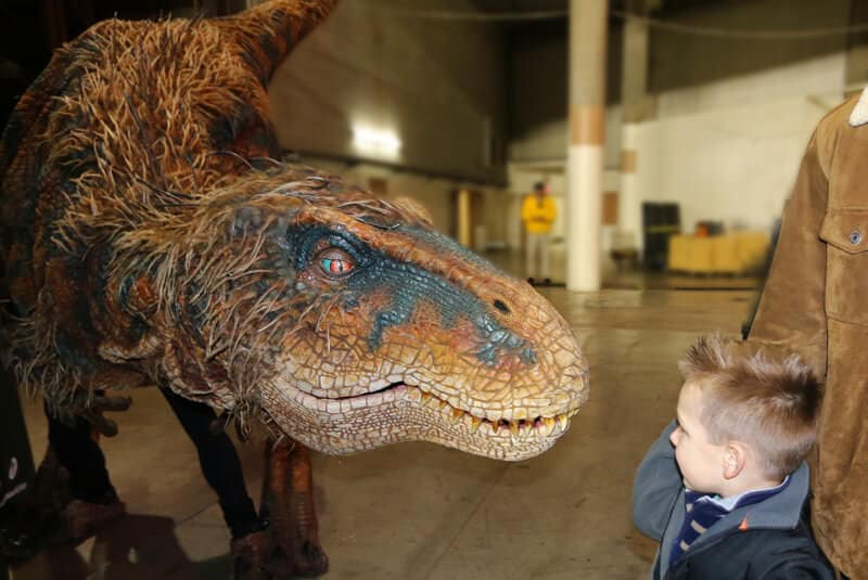Dinosaurs-2-cropped-web