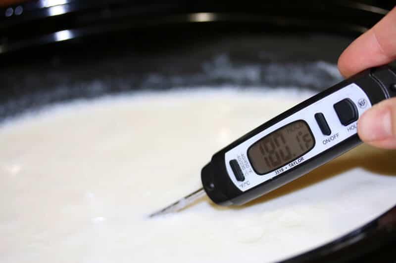 Greek-Yogurt-prep-16