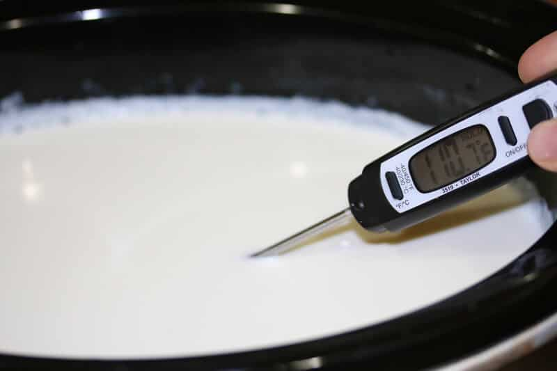 Greek-Yogurt-prep-17
