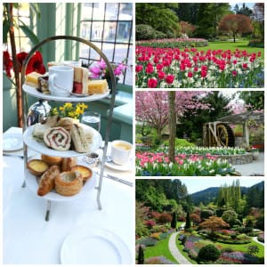 Breathtaking Butchart Gardens and High Tea in Victoria, BC