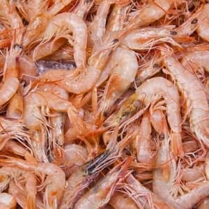 What You Didn't Want To Know – But Should – About Shrimp