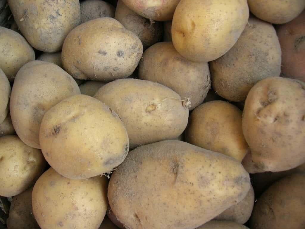 potatoes-501134_1280