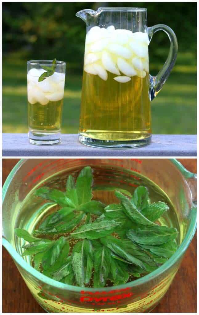 Iced Apple Peppermint Tea