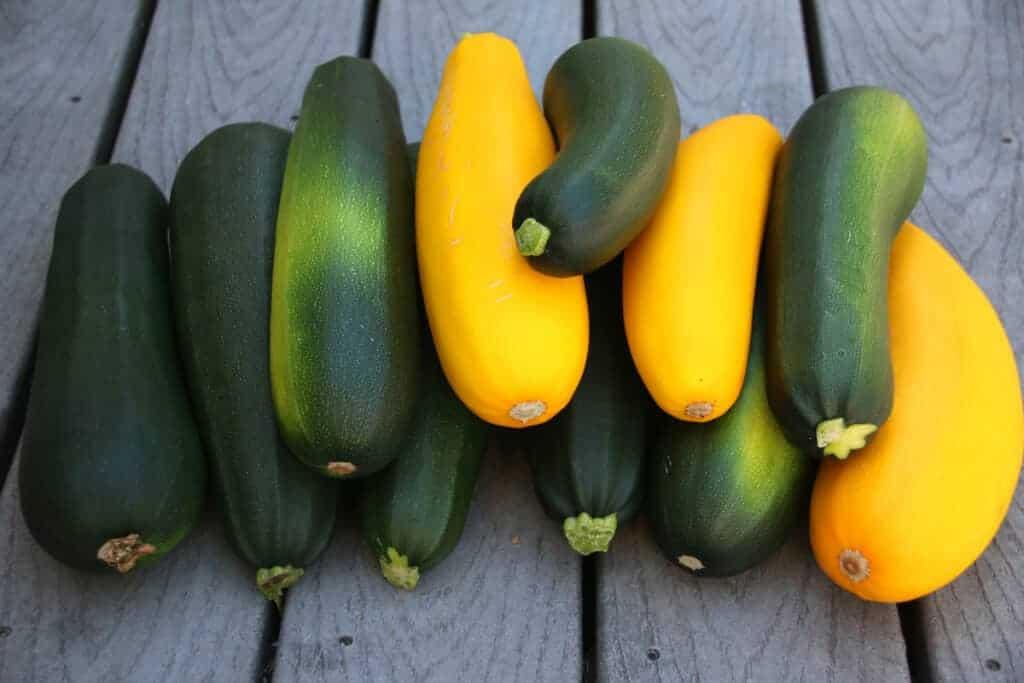 Zucchini-Fritters-prep-1