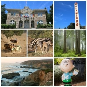 Family Visit To Sonoma County: What To See & Where To Stay