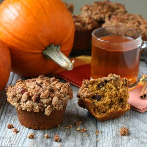 pumpkin chocolate pecan streusel muffins recipe