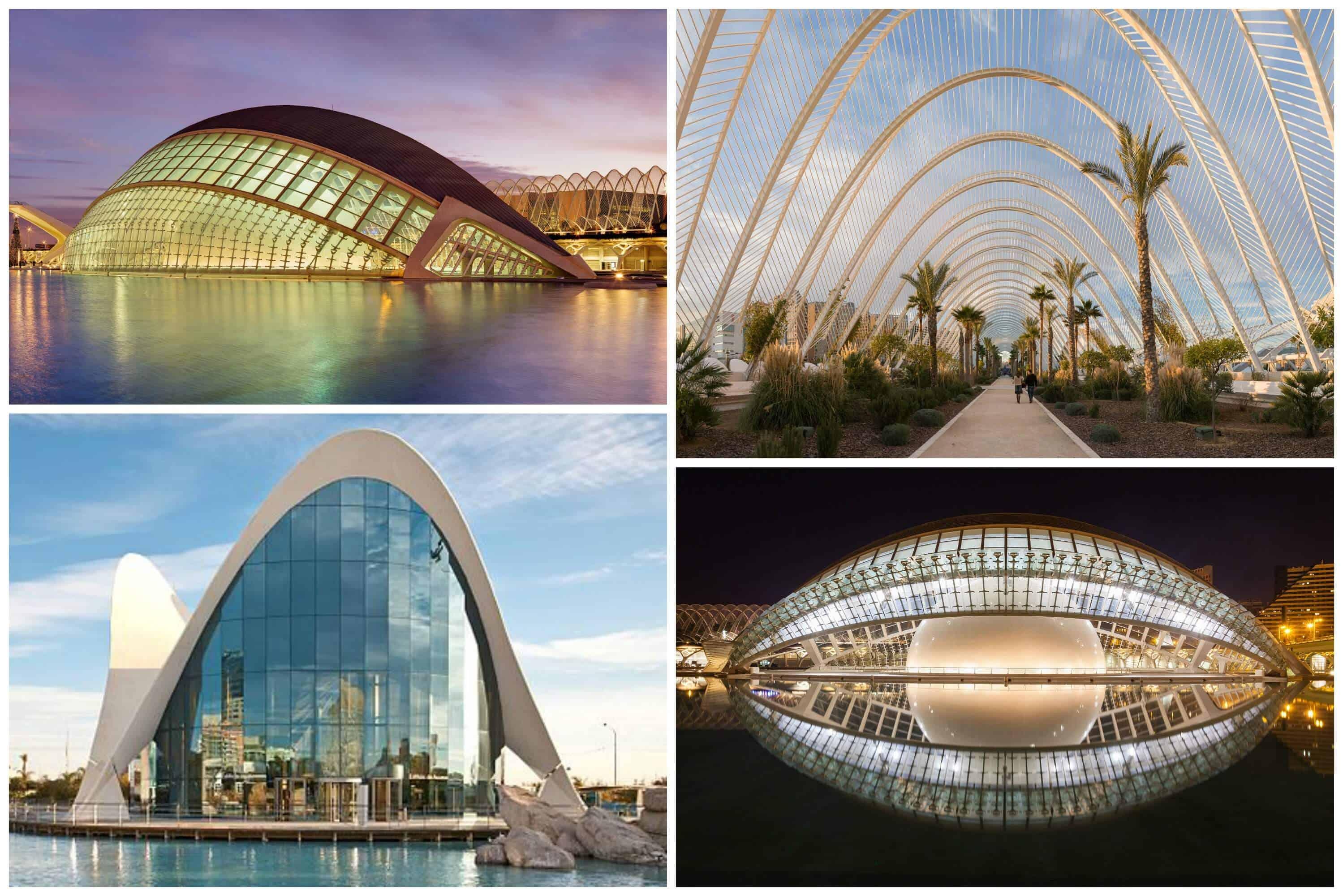 Valencia Collage 1