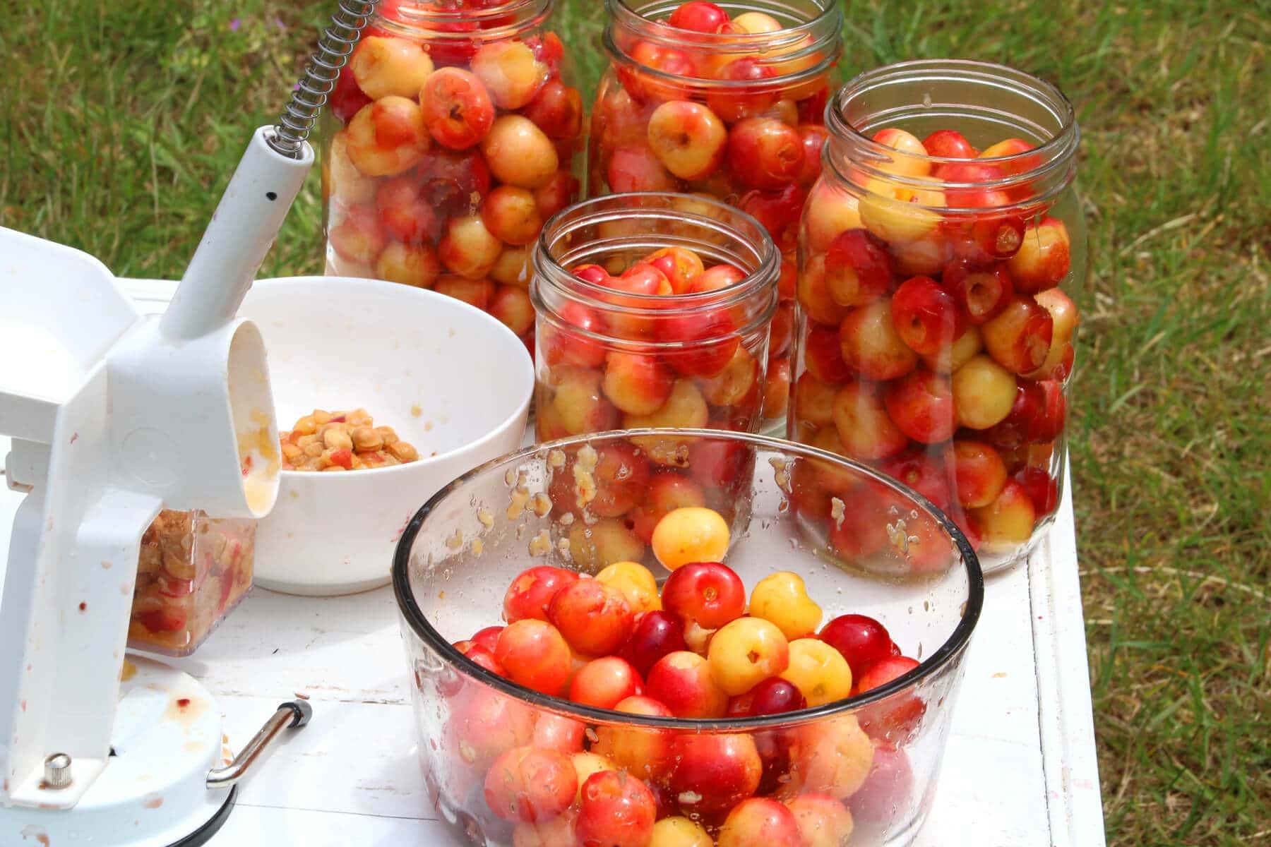 Cherries-16
