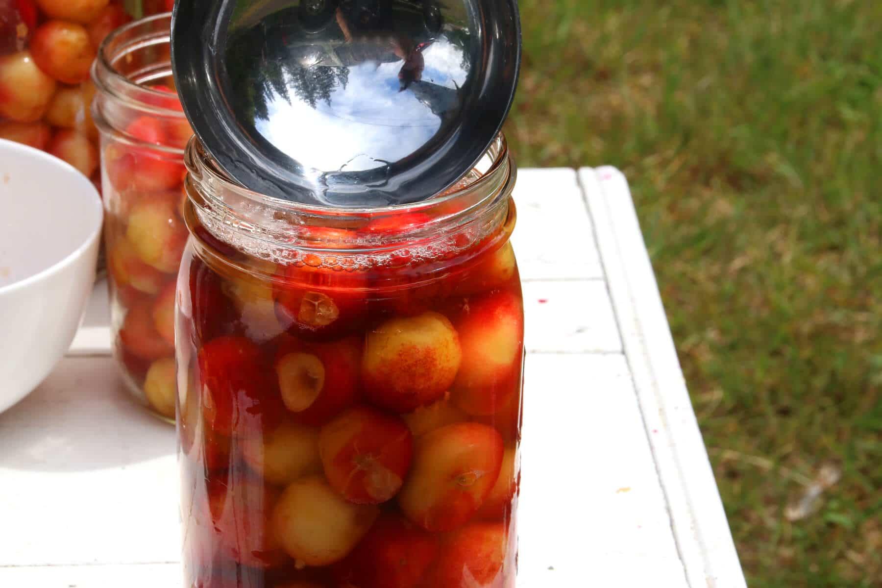 Cherries-17