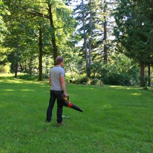 WORX Turbine 56V Cordless Leaf Blower & Gutter Cleaning Kit Review