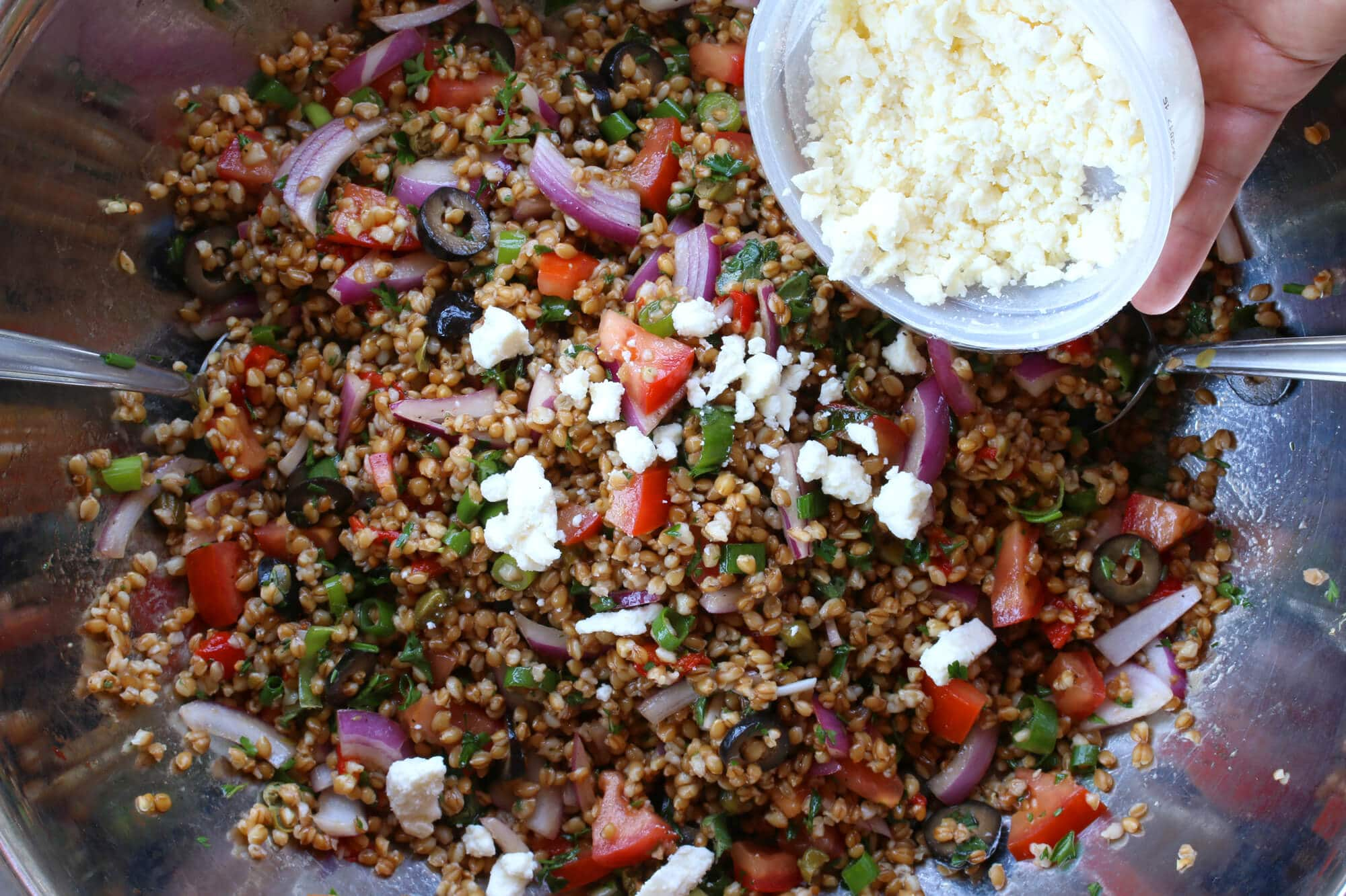 greek einkorn wheat berry salad recipe
