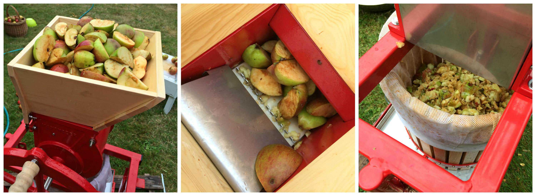 apple-press-collage-1