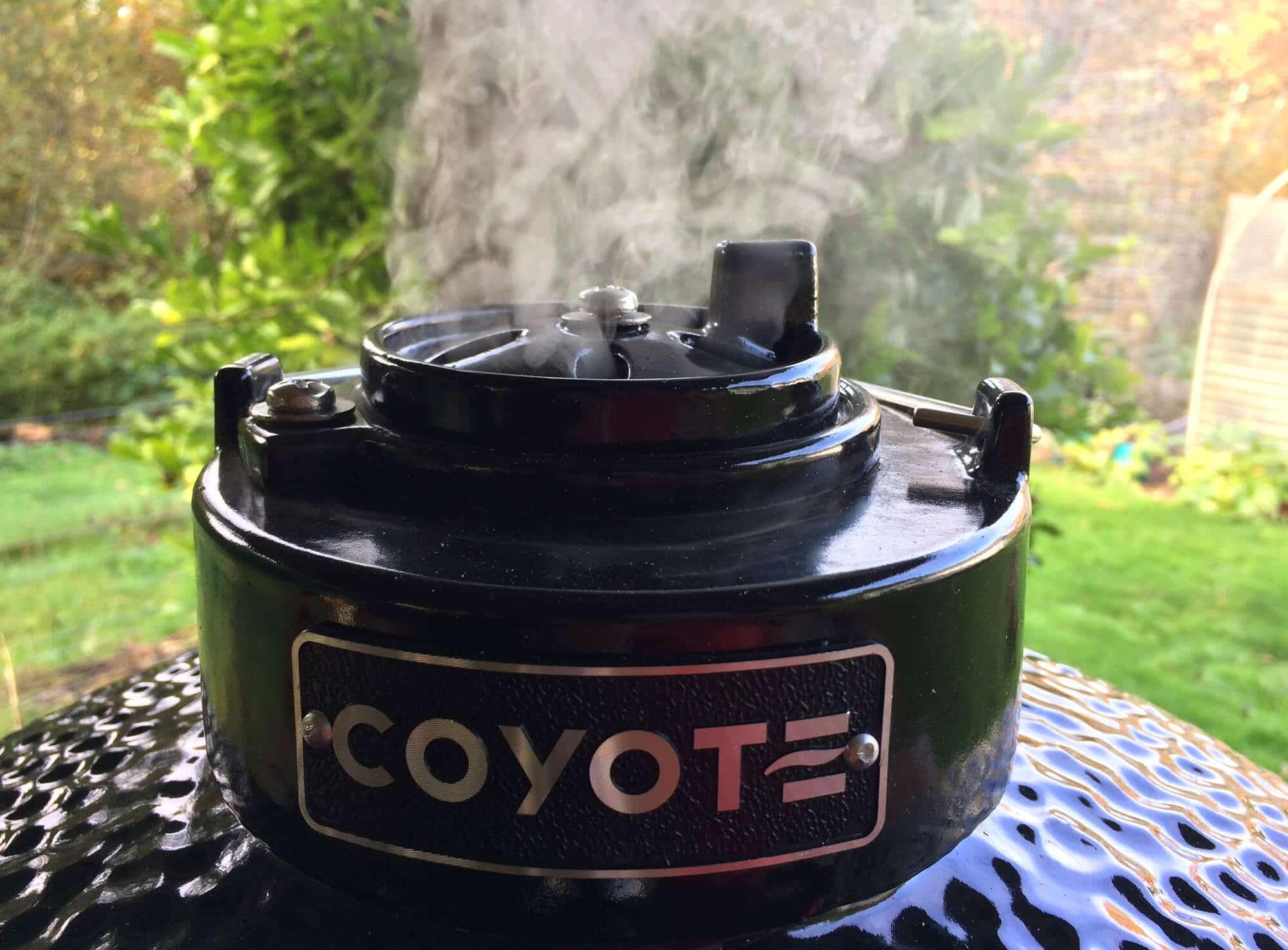 coyote-28