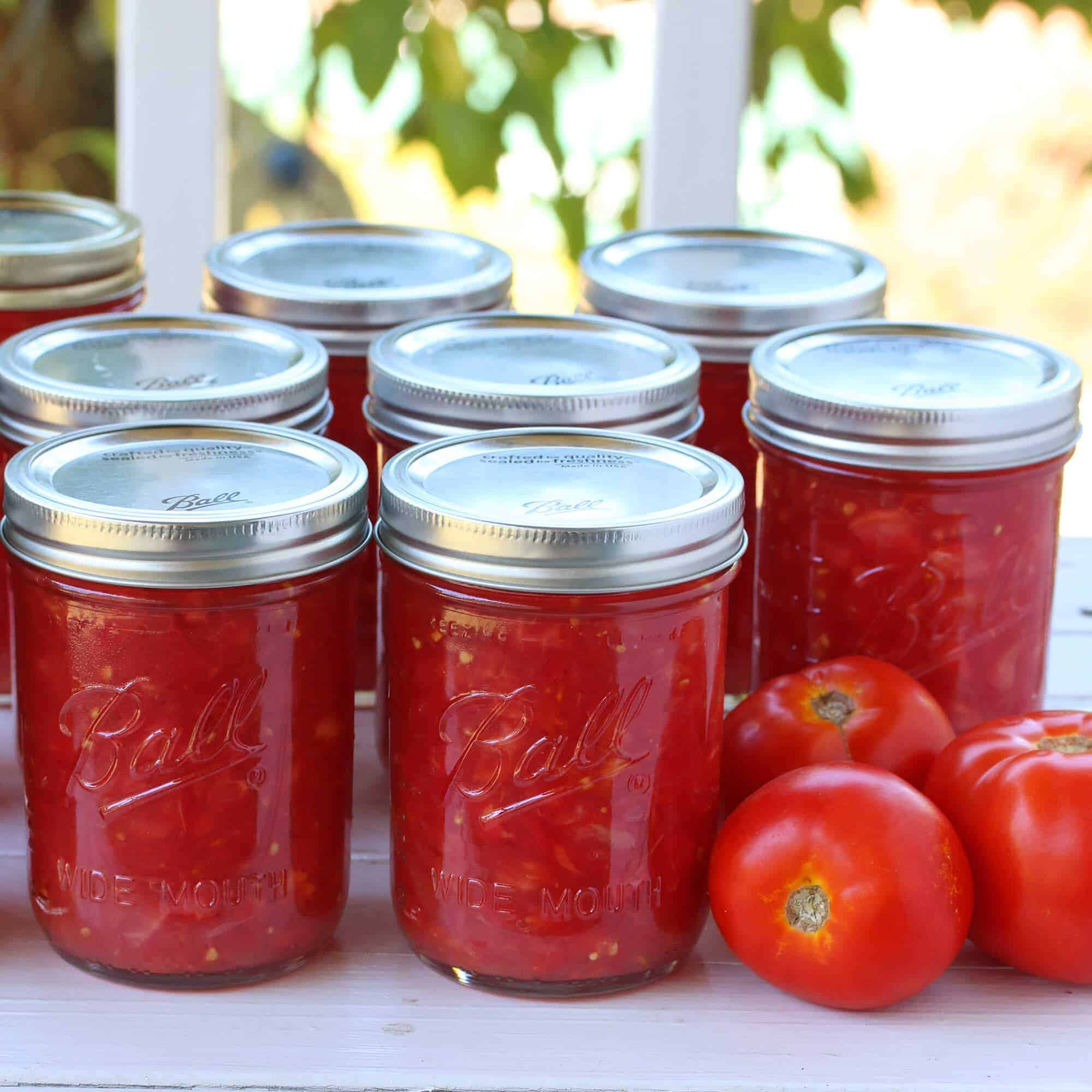 Make your own tomato juice from canned tomatoes
