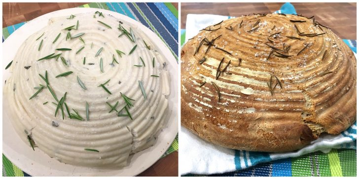 rosemary sourdough bread recipe homemade rustic artisan crusty