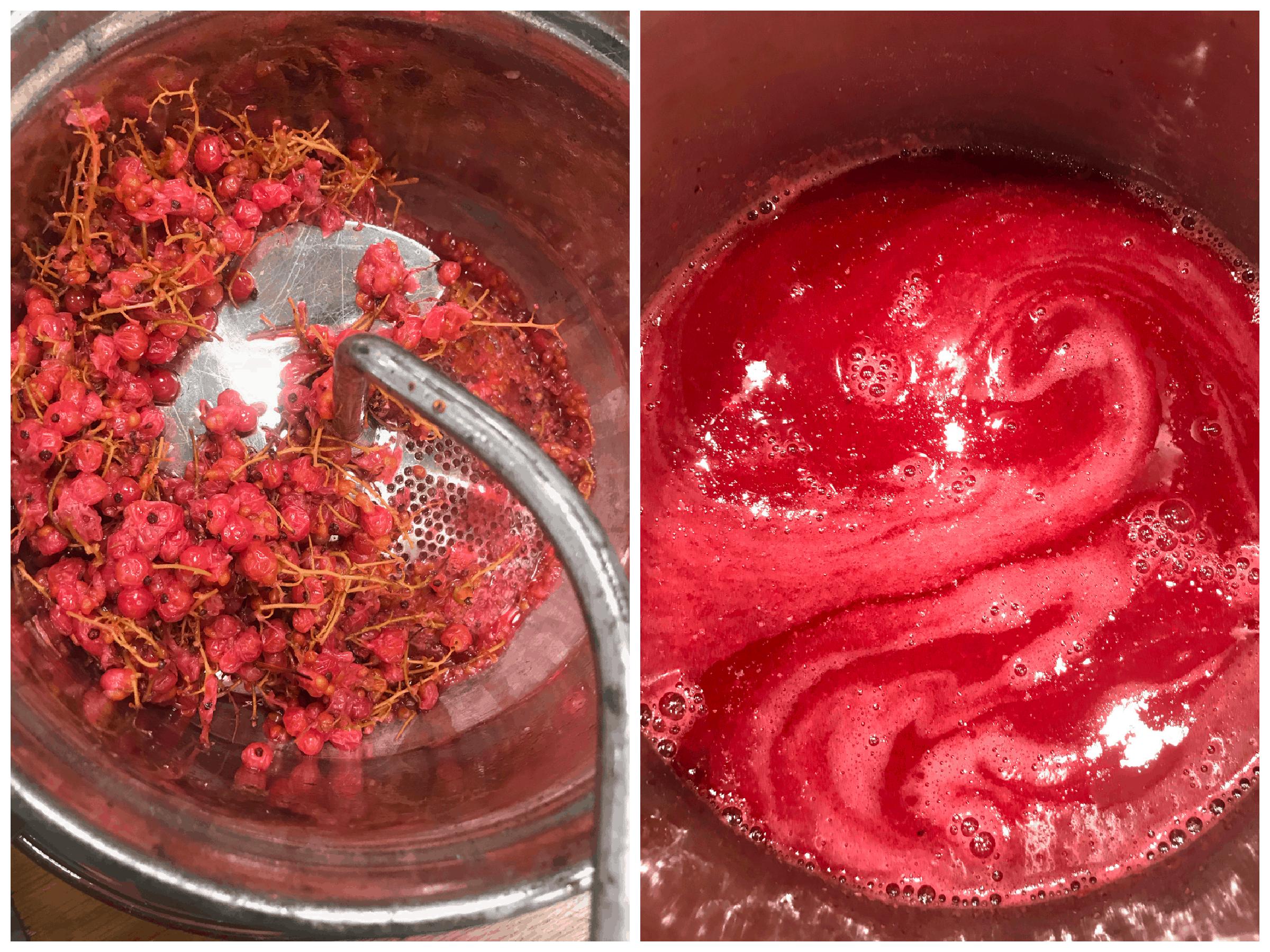 running berries through food mill
