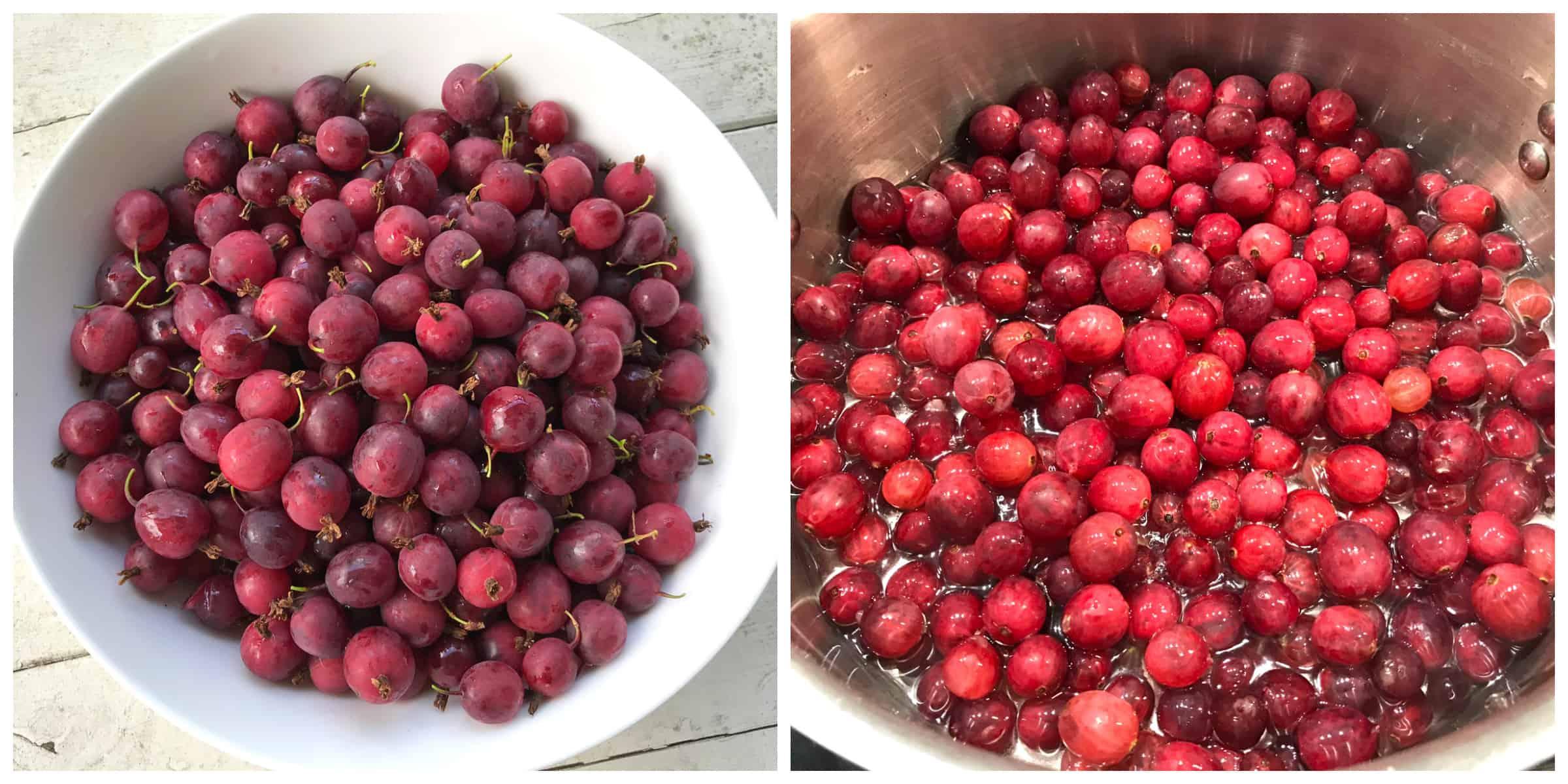 gooseberries in bowl and pot