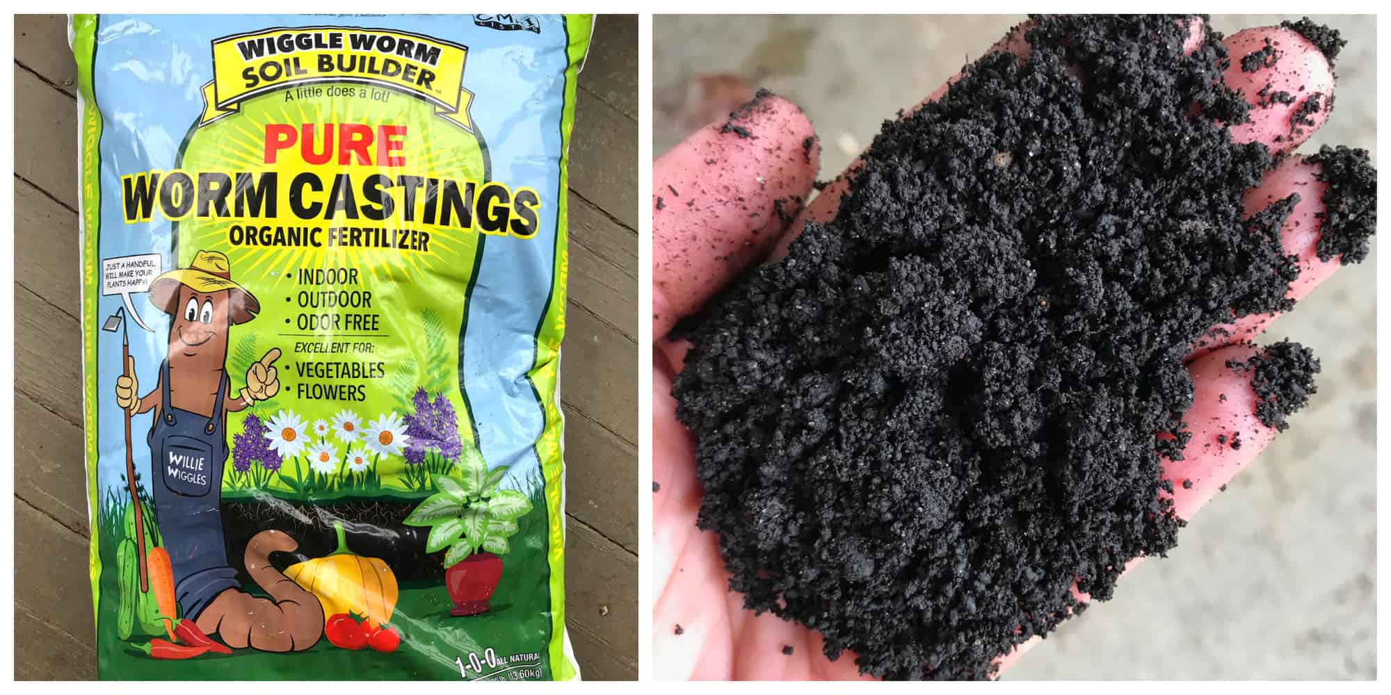 where to buy worm castings